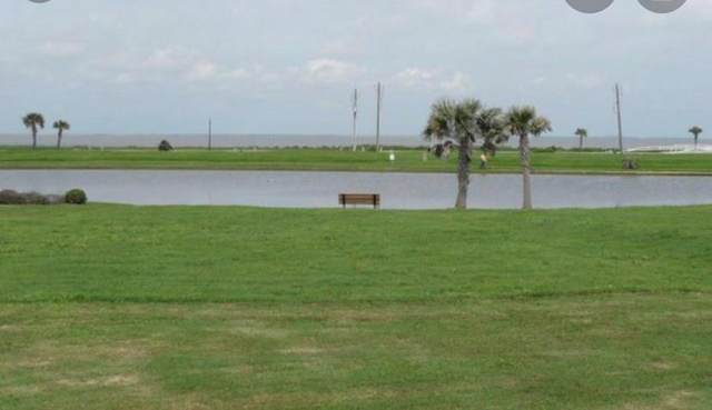 26834 Estuary, Galveston, TX 77554 (MLS #26839760) :: The SOLD by George Team