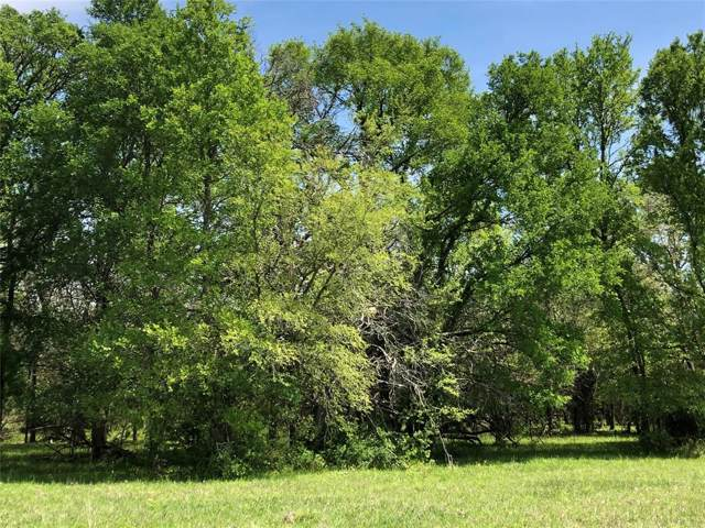 TBD County Road 220 Road E, Anderson, TX 77830 (MLS #26907523) :: The Bly Team
