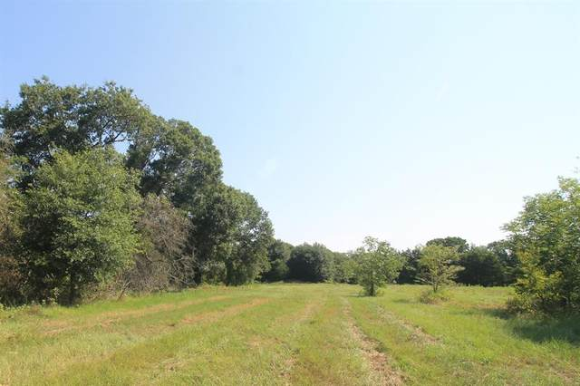 TBD Tract 1 County Road 119, Caldwell, TX 77836 (MLS #26924120) :: The Freund Group