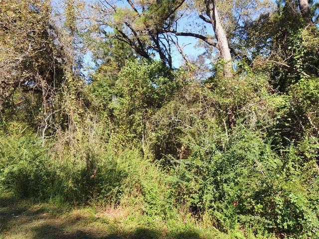 205 Oak Hollow Boulevard, Magnolia, TX 77355 (MLS #27009267) :: Ellison Real Estate Team