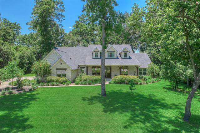 27031 Star Gazer Way, Spring, TX 77386 (MLS #27023429) :: Giorgi Real Estate Group