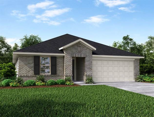 8803 Mugwort Drive, Rosenberg, TX 77469 (MLS #27057424) :: Homemax Properties