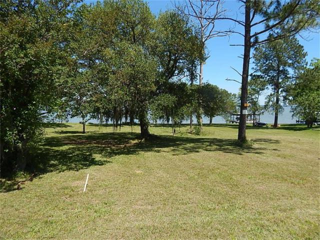 LOT 7 High Crest Drive, Point Blank, TX 77364 (MLS #27064244) :: Texas Home Shop Realty