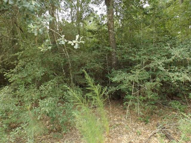 Lt 19 Greenway Drive, Plantersville, TX 77363 (MLS #27184178) :: The Bly Team