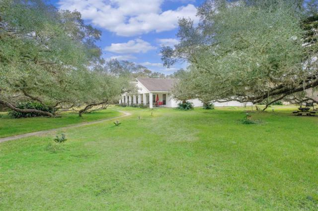 7318 Pecan Drive Drive, Damon, TX 77430 (MLS #2724404) :: Texas Home Shop Realty