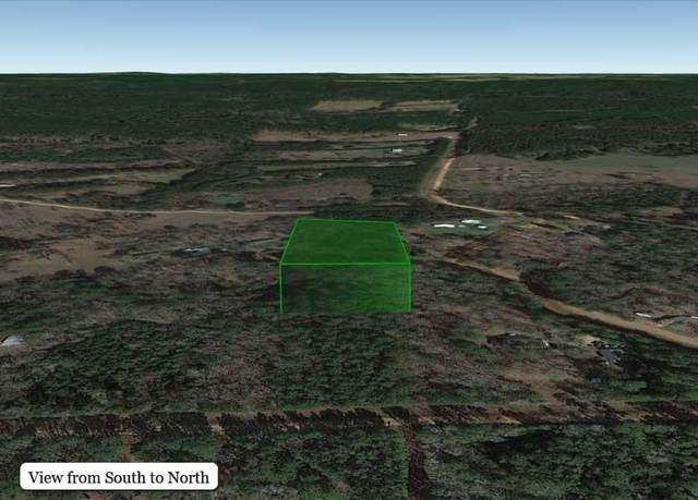 TBD Circle Creek, New Waverly, TX 77358 (MLS #27250817) :: All Cities USA Realty