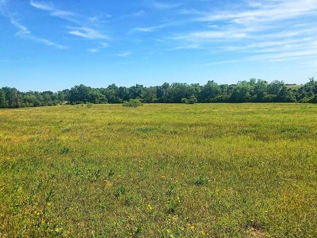 TBD Cr 270 / Cr 139, Weimar, TX 78962 (MLS #2726203) :: NewHomePrograms.com LLC