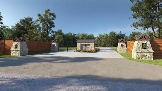 21803 Red Oak View Ct, Spring, TX 77379 (MLS #2729733) :: Giorgi Real Estate Group