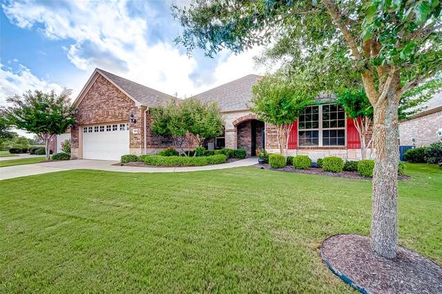 2807 Wild Olive Way, Richmond, TX 77469 (MLS #27494848) :: The SOLD by George Team
