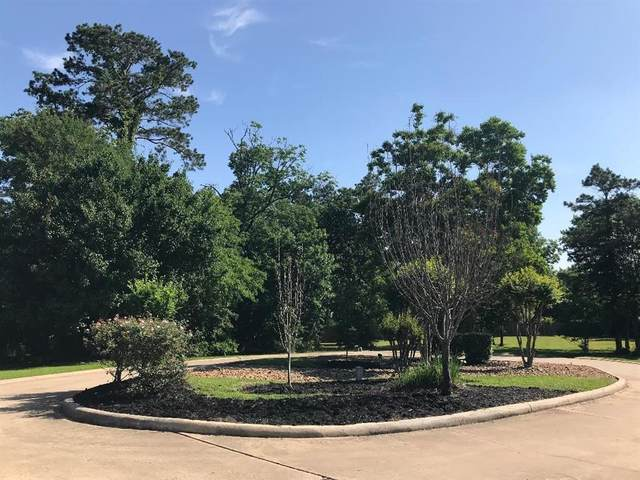 12505 Pebble View Drive, Conroe, TX 77304 (MLS #27608680) :: The SOLD by George Team