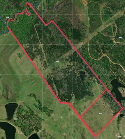 103.78 Private Road 5215, Grapeland, TX 75844 (MLS #27690306) :: Lerner Realty Solutions