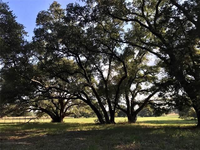 265 Boulton Creek Road, Muldoon, TX 78949 (MLS #2776636) :: Texas Home Shop Realty