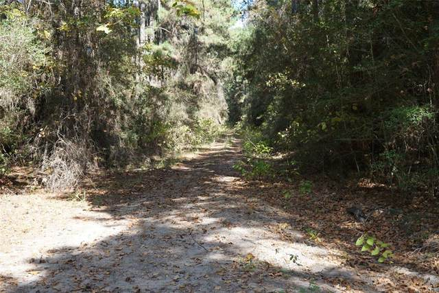 00 Deep Woods, Plantersville, TX 77363 (MLS #27775756) :: The Home Branch