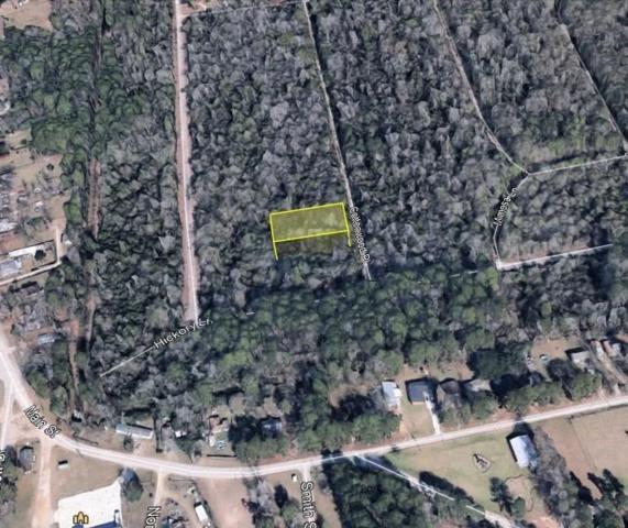 00 Cottonwood Place, Splendora, TX 77372 (MLS #27822133) :: The Freund Group