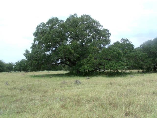 0 Wetjen Lane, Muldoon, TX 78949 (MLS #2783467) :: Texas Home Shop Realty