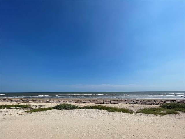 1649 Canal, Sargent, TX 77414 (MLS #27923852) :: Christy Buck Team