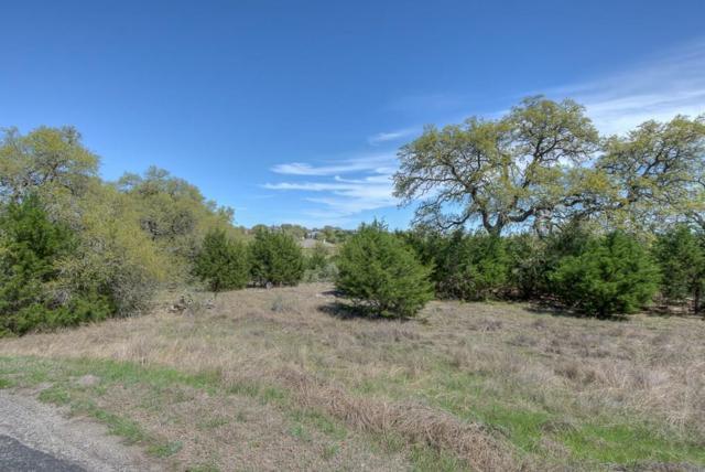 1208 (LOT 333) Chablis, New Braunfels, TX 78132 (MLS #28046546) :: Texas Home Shop Realty