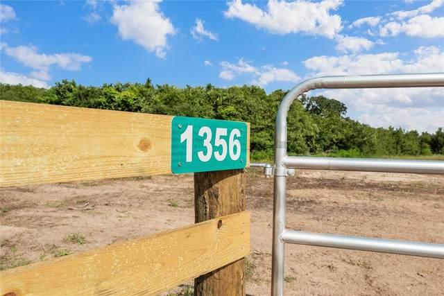 1356 Piney Woods Drive, Alleyton, TX 78935 (MLS #28057029) :: Michele Harmon Team
