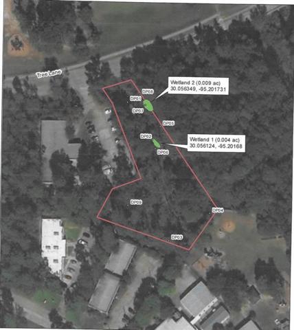 3450 Tree Lane, Houston, TX 77339 (MLS #28064974) :: The Heyl Group at Keller Williams
