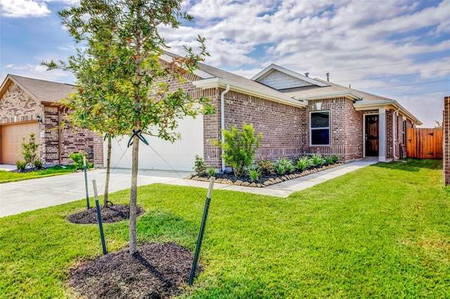 12702 Camellia Glade Lane, Houston, TX 77044 (MLS #28067934) :: Bay Area Elite Properties