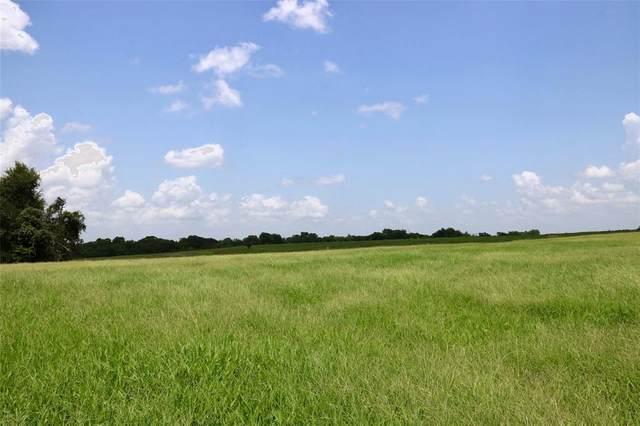 Lot 9 Reagans Way, Navasota, TX 77868 (MLS #28101712) :: Connect Realty