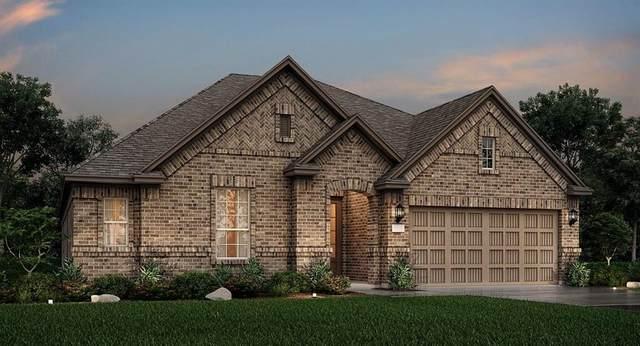 17423 Wayman Lily Lane, Hockley, TX 77447 (MLS #28115922) :: The Property Guys
