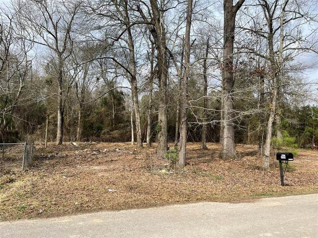27621 Peach Creek Drive, New Caney, TX 77357 (MLS #28140345) :: Giorgi Real Estate Group