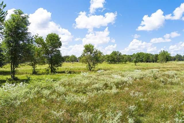 0 County Road 786, Rosharon, TX 77583 (MLS #28213385) :: Parodi Group Real Estate