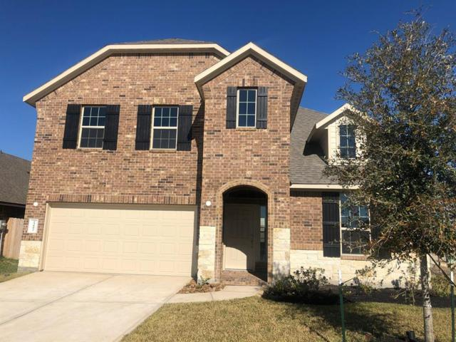 23802 Tribano Court, Katy, TX 77493 (MLS #28237548) :: The SOLD by George Team