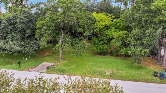 11710 Denise Drive, Houston, TX 77024 (MLS #28277165) :: Green Residential