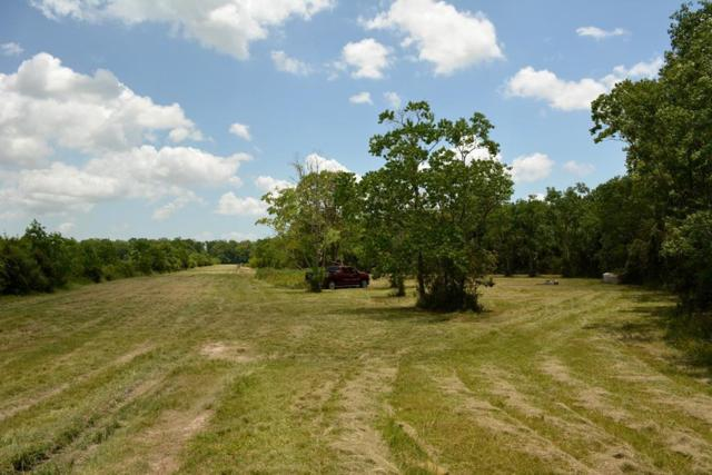 0 N County Road 486, Dayton, TX 77535 (MLS #28278321) :: The SOLD by George Team