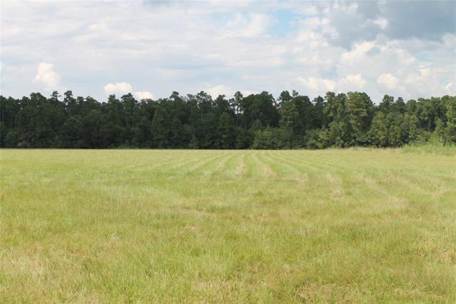 TBD Jr Phillips Rd, Livingston, TX 77351 (MLS #28278990) :: The SOLD by George Team