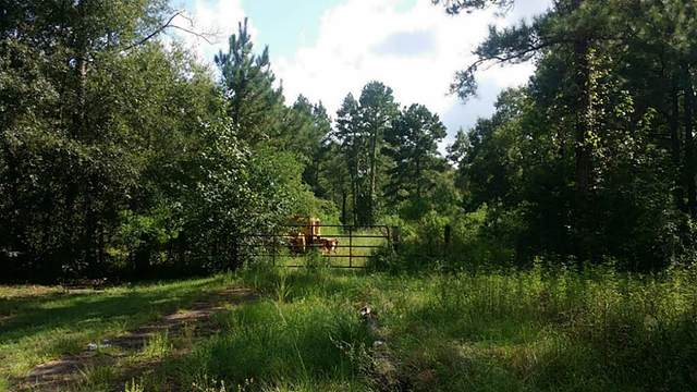 000 Firetower Rd, Conroe, TX 77301 (MLS #28281868) :: The SOLD by George Team