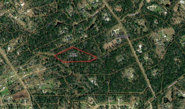 11 Riata, Magnolia, TX 77354 (MLS #282913) :: Fairwater Westmont Real Estate