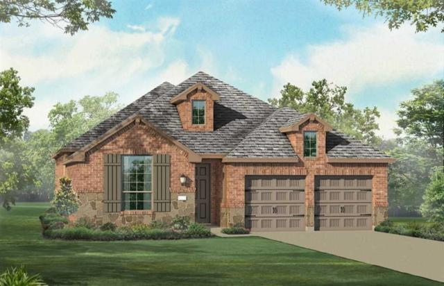 23302 Andorra Falls Trace, Katy, TX 77493 (MLS #28353930) :: The SOLD by George Team