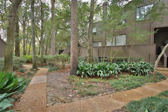 218 Litchfield, Houston, TX 77024 (MLS #28377160) :: Krueger Real Estate