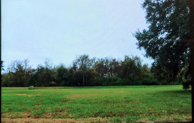2342 Ridgewood, West Columbia, TX 77486 (MLS #28424978) :: Magnolia Realty