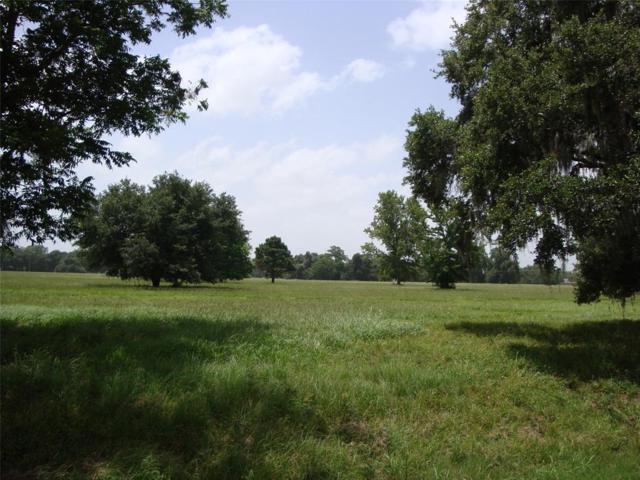 1708 Flintlock Court, Angleton, TX 77515 (MLS #28460439) :: The SOLD by George Team
