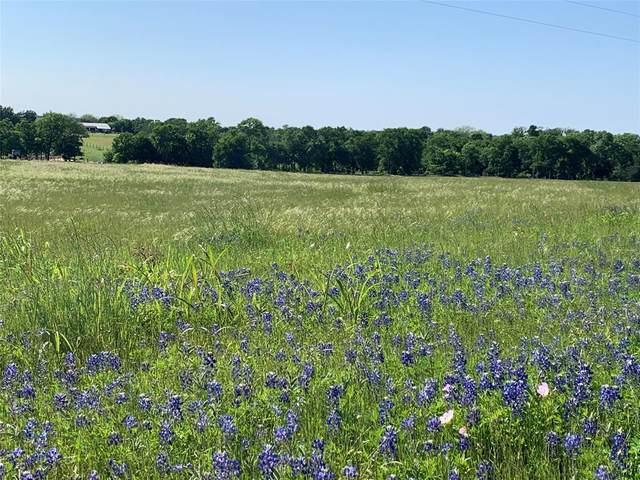 10055 Pawlak Lane, Chappell Hill, TX 77426 (MLS #28476663) :: Michele Harmon Team