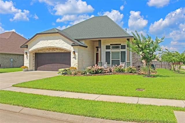 6690 Woodridge Drive, Lumberton, TX 77657 (MLS #28515537) :: The Property Guys
