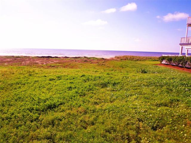 Lot 5 Hershey Beach, Galveston, TX 77554 (MLS #28524692) :: The Heyl Group at Keller Williams