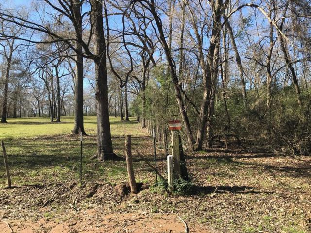 6 ac Cr 143, Leona, TX 75850 (MLS #28558570) :: The Heyl Group at Keller Williams
