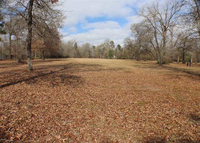 00 Tbd Meadow Lake Road, Cleveland, TX 77328 (MLS #28566205) :: The Bly Team