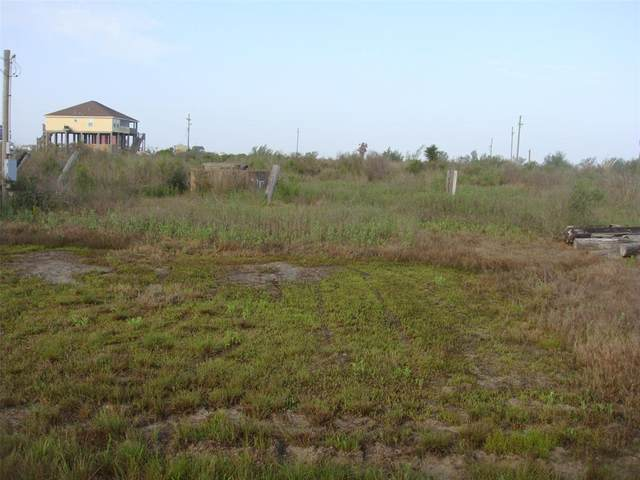 1107 Blacks Slip Rd, Gilchrist, TX 77617 (MLS #28587365) :: My BCS Home Real Estate Group