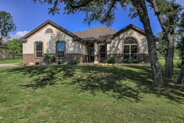 202 Venture Boulevard S, Point Venture, TX 78645 (MLS #28593974) :: The Bly Team