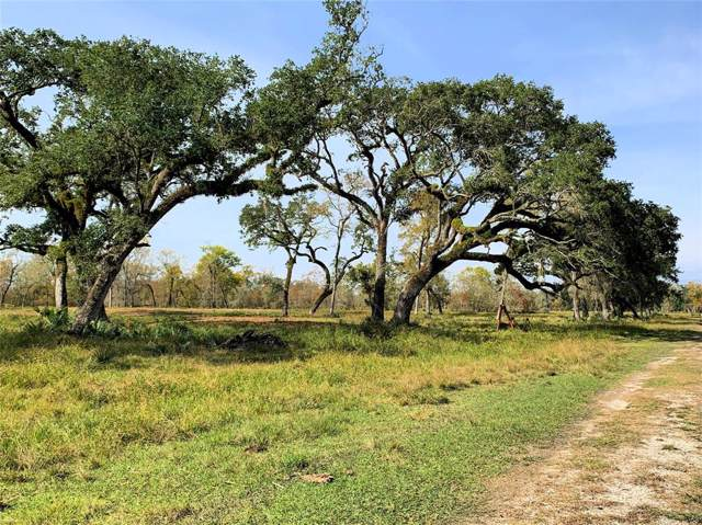 24388 County Road 332 - Off, Sweeny, TX 77480 (MLS #28606382) :: The Queen Team