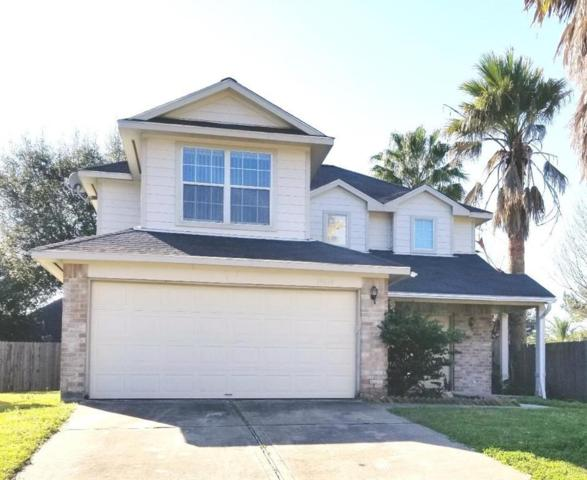 18619 Tree Lark Lane, Katy, TX 77449 (MLS #28631114) :: KJ Realty Group