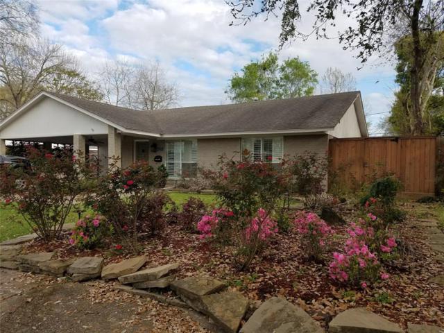 6220 Reamer Street, Houston, TX 77074 (MLS #28656641) :: Giorgi Real Estate Group