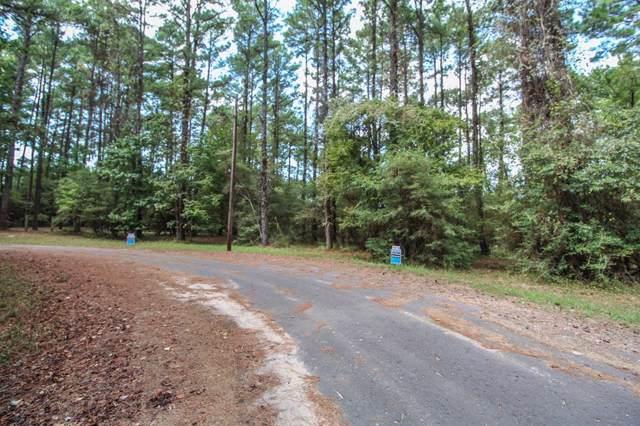TR 20 Grand Pine Loop, Livingston, TX 77351 (MLS #28694152) :: Ellison Real Estate Team