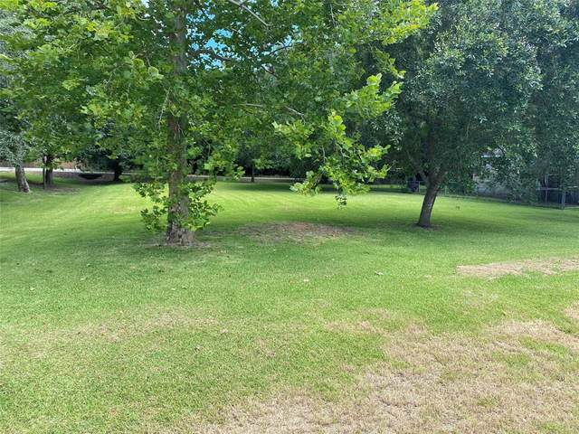 5307 Bayou Drive, Dickinson, TX 77539 (MLS #28711777) :: Green Residential